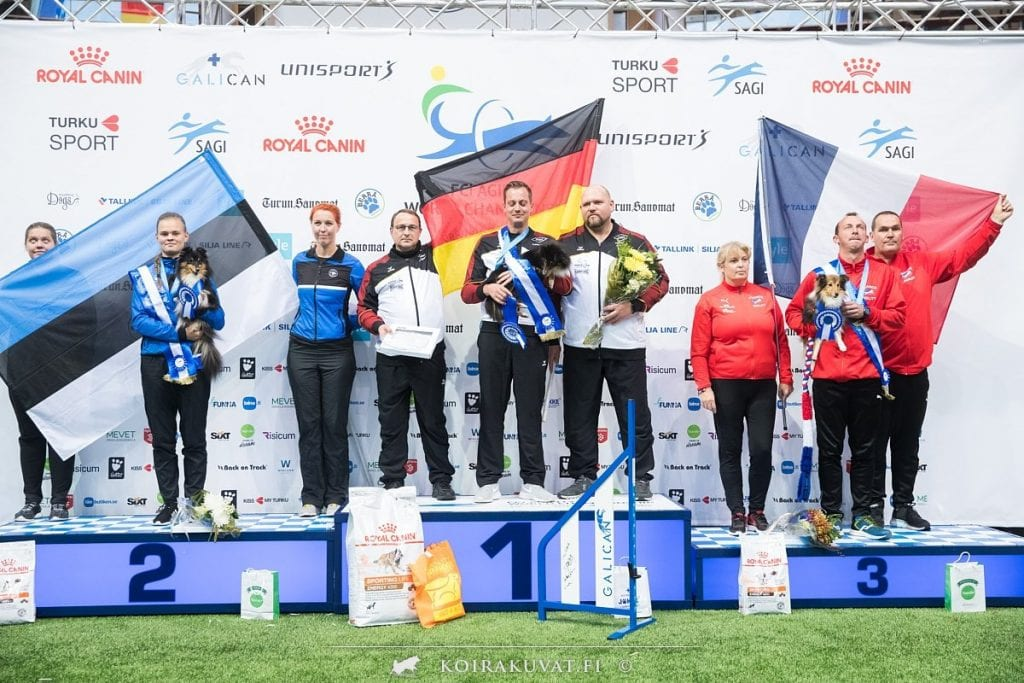 Shelties on the podium in Small Agility results at AWC2019