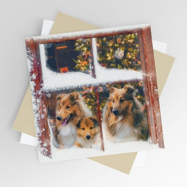 Sheltie Christmas Cards
